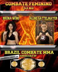 Brazil Combat 2