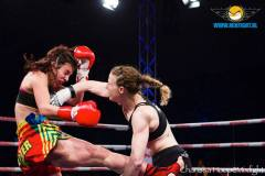 Barlow Courtesy Mix Fights