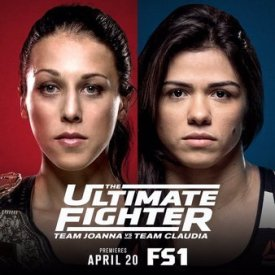 The-Ultimate-Fighter-23-Finale-poster